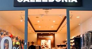 магазин-calzedonia