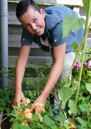 выращивание-цветов-на-даче
