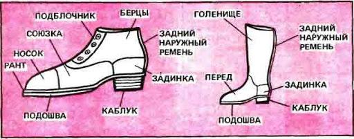 Из чего состоит обувь: