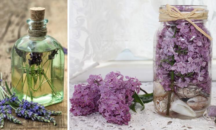 Как сохранить цветы в глицерине